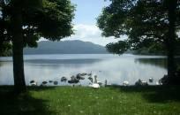 Dauguma Airijos maudyklų įvertintos puikiai