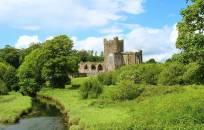 Tikėtina, kad Airijos turizmas šiais metais kris 80 proc.