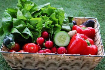 Rekomenduoja maitintis vegetariškai keliskart per savaitę